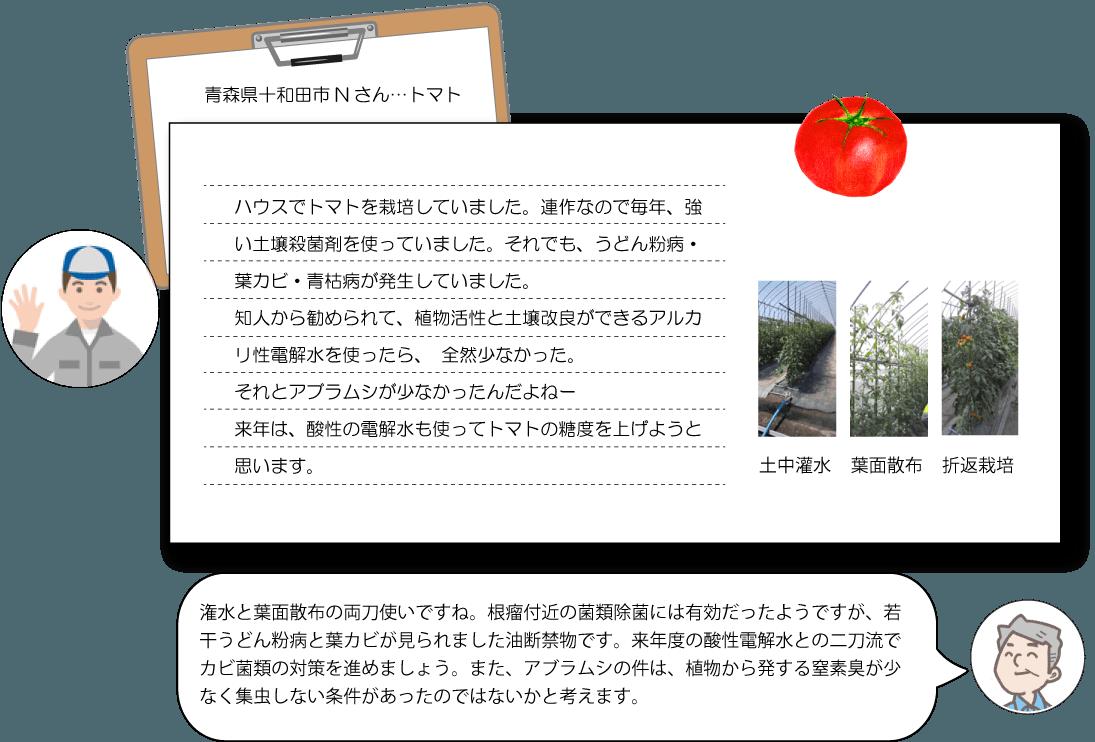 電解水農業 トマト