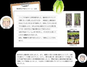 電解水農業 白菜