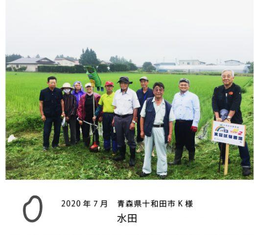 電解水農業 十和田市K様